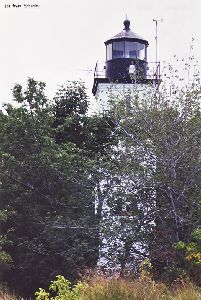 The lighthouse shot through the trees.